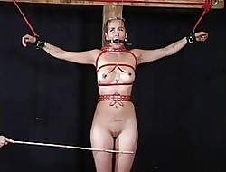Blonde Porno-Videos - grobe Arsch Porno